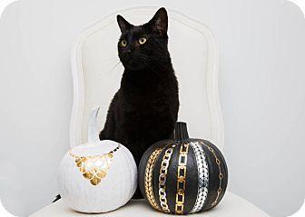 Happy Halloween! Love, Moby