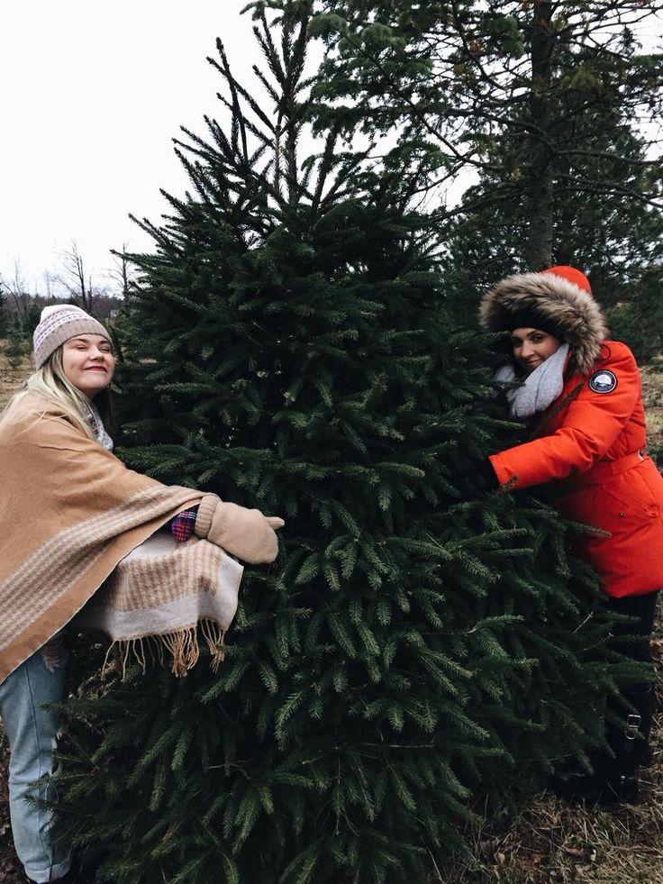 Christmas Tree Hunting at Rina's Christmas Trees