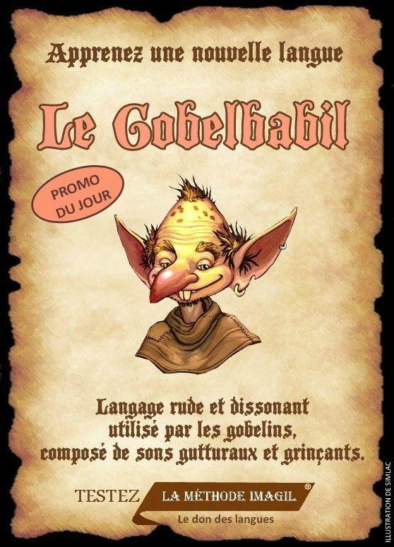 Affiche cours de langue