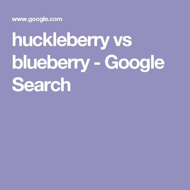 huckleberry vs blueberry - Google Search