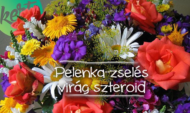 csodaszérum, amivel akár megháromszorozhatjátok a vágott virágok élettartamát -McMenemy Márk videója:   http://kert.tv/pelenkazseles-virag-szteroid-video-markkal/
