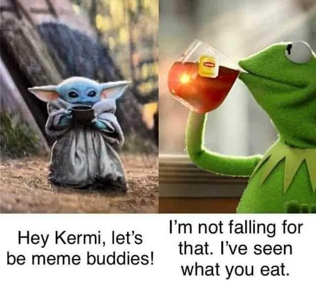 Imgur Com Yoda Funny Yoda Meme Star Wars Humor