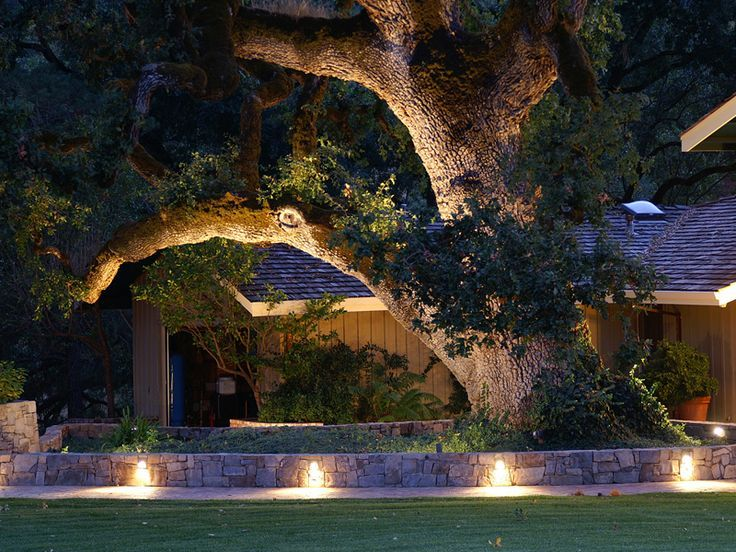 Placing landscape lighting around your home gives garden interest at night