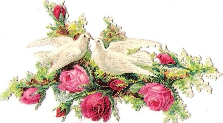 Oblaten Glanzbild scrap die cut chromo Taube dove colombe couple Paar