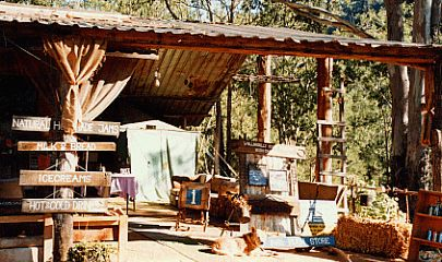 Wollondilly River Station  in Southern Highlands.  Bush Camping spot, near a beautiful river for fishing.