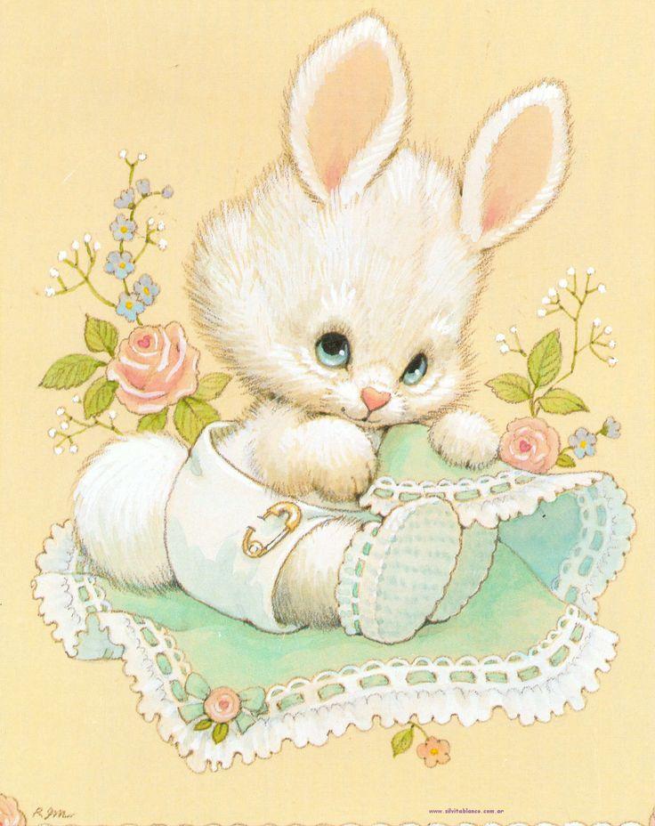 Красивому зайчику открытка, картинки