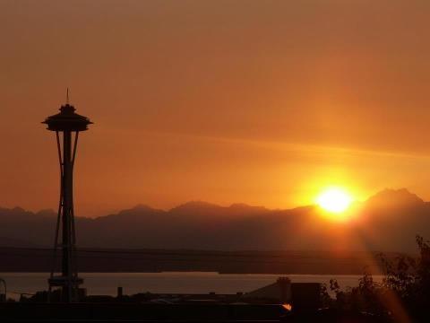SeattleVisitedlook Atdid