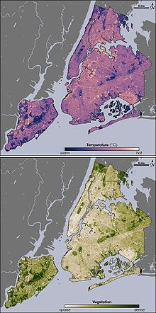 Urban heat island effect. Thermal (top) and vegetation (bottom) locations around New York City via infrared satellite imagery. A comparison of the images shows that where vegetation is dense, temperatures are cooler. (Why Kadeer is slightly warmer than freezing most of the time)