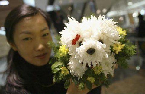 Réalisations florales