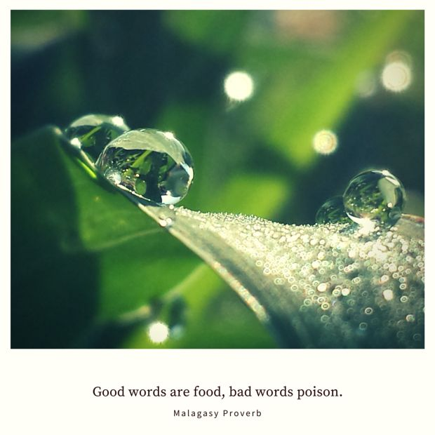 Good words are food, bad words poison. – Malagasy Proverb