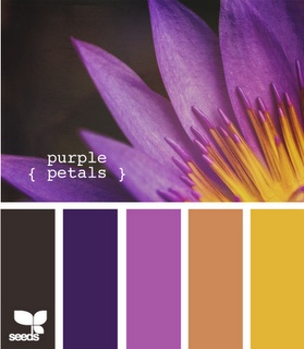 Purple tones and complementing colours
