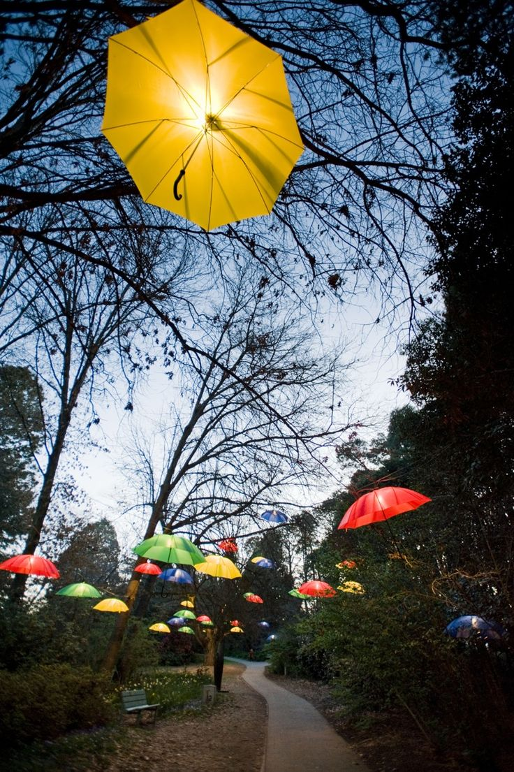 Floriade NightFest - Canberra - Australia