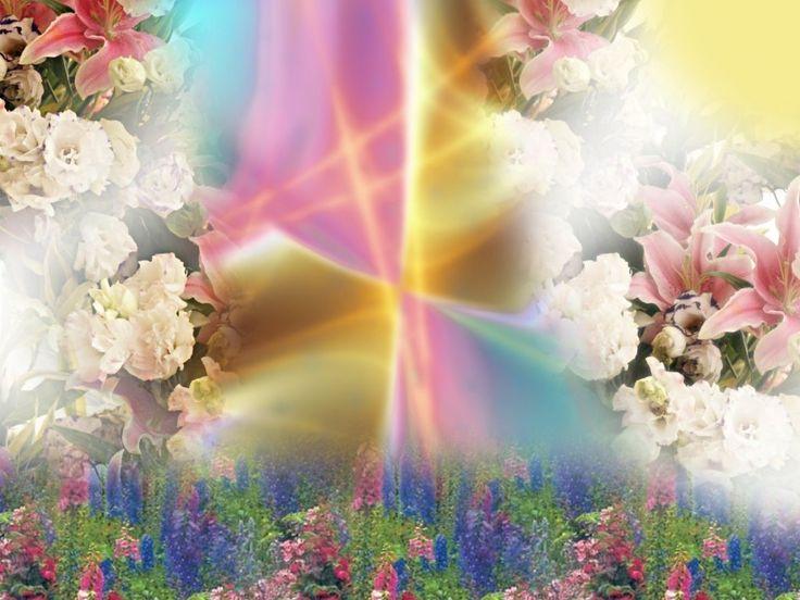 Spring - Bing Images