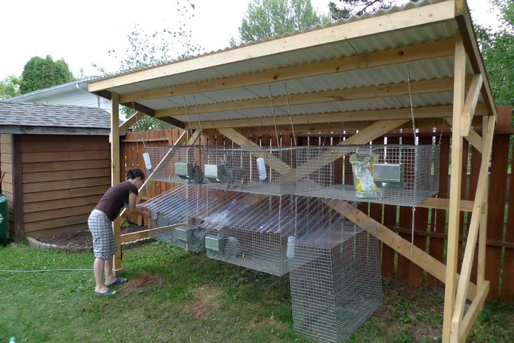 build your own rabbit hutch plans woodworking projects