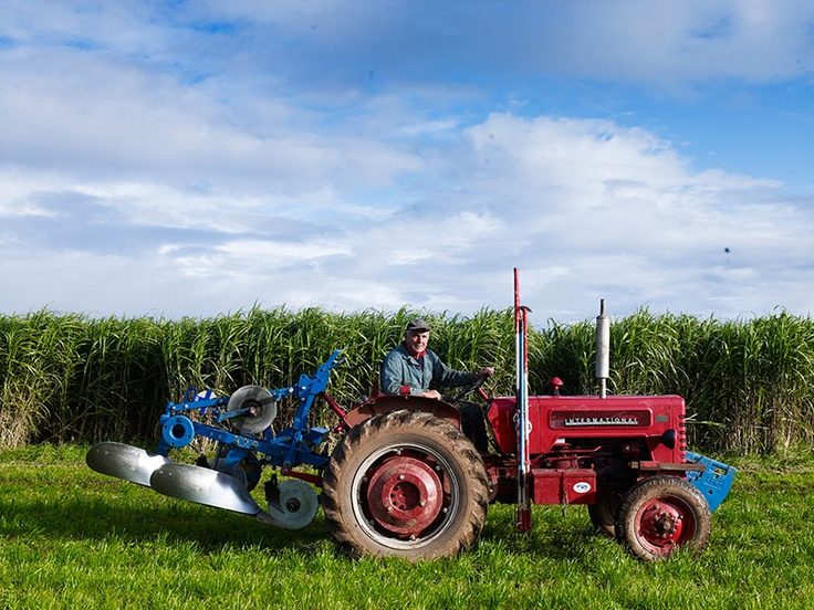154th Mendip Ploughing Match held at Yoxter Farm - https://www.yeovalley.co.uk/events/ploughing-match#