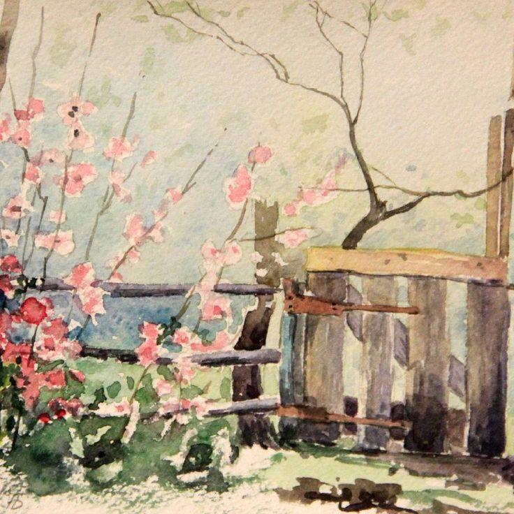 The garden door #flowers#nature#watercolor#painting#door#garden#blossom#pink#акварель#цветы#калитка