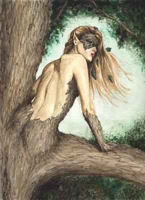 Dryad, creatures that live in trees in Greek mythology. I like how she looks like she's about to go after someone who disturbed her home
