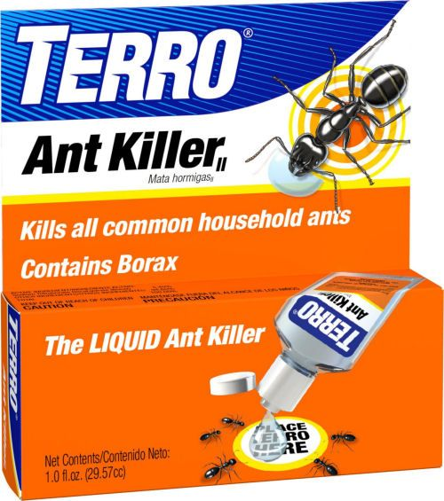 Testing 5 Borax Ant Killer Remedies - Which ones Work? | The Gardening Cook