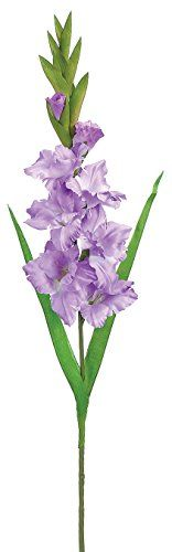 Silk Plants Direct Gladiolus Pack of 12  Lavender ** Check out the image by visiting the link.