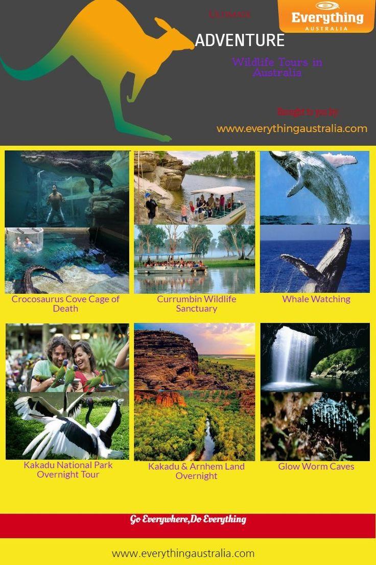 Ultimate ADVENTURE Wildlife Tours in Australia