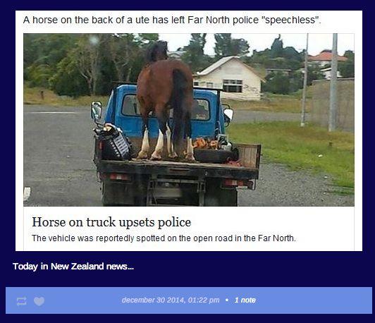 On what upsets New Zealand police: | Stuff | New Zealand ...