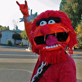 Animal Costume from the Muppets