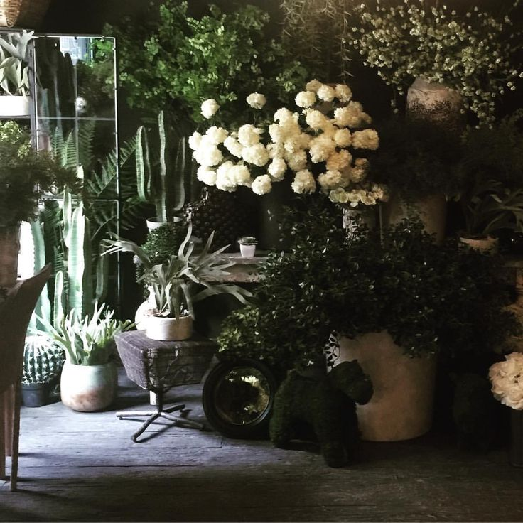 Ta Da our new revamped store opens tomorrow. Gem and I have had the longest days with a 3.45am start this morning and  6 crazy days but we love it. Here is a sneak peak of our new collection of botanicals and huge new faux flower section We've taken over the whole front half of the store with them due to demand and it looks so cool. I said to Gem we actually have the coolest store on the planet. It's  taken me 14 years to be this happy with the store but I love evening about it. Tomorrow…