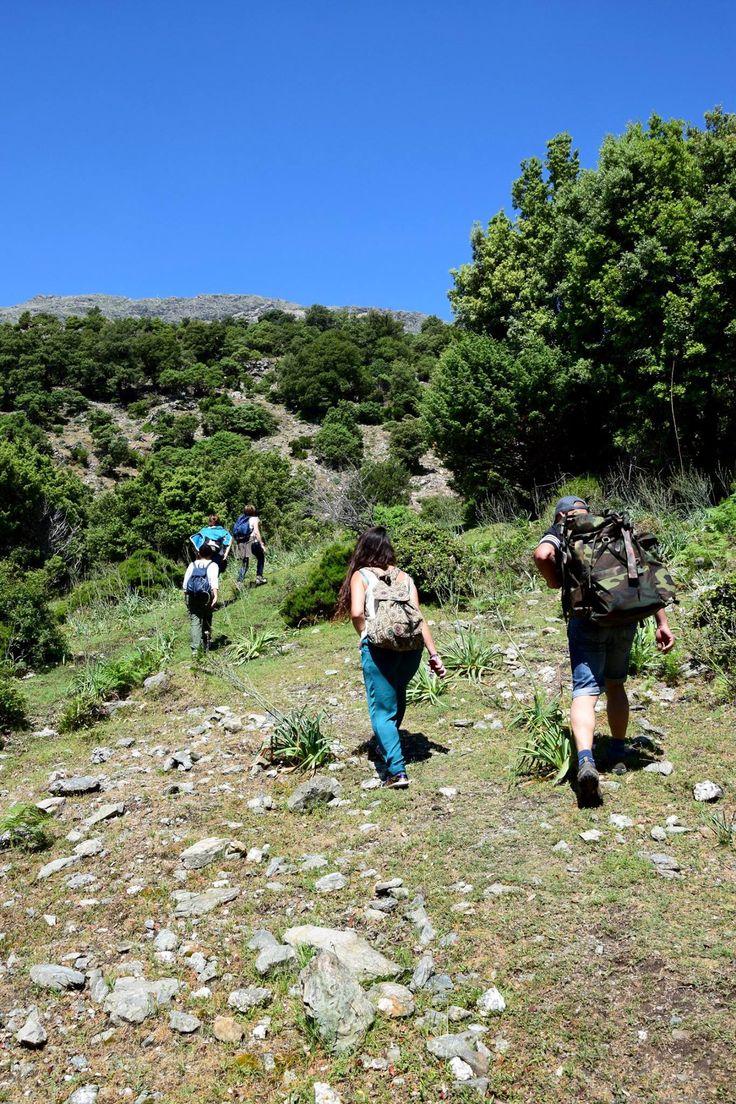 Trekking through Gennargentu mountains, Ogliastra, Sardinia #enjoyogliastra