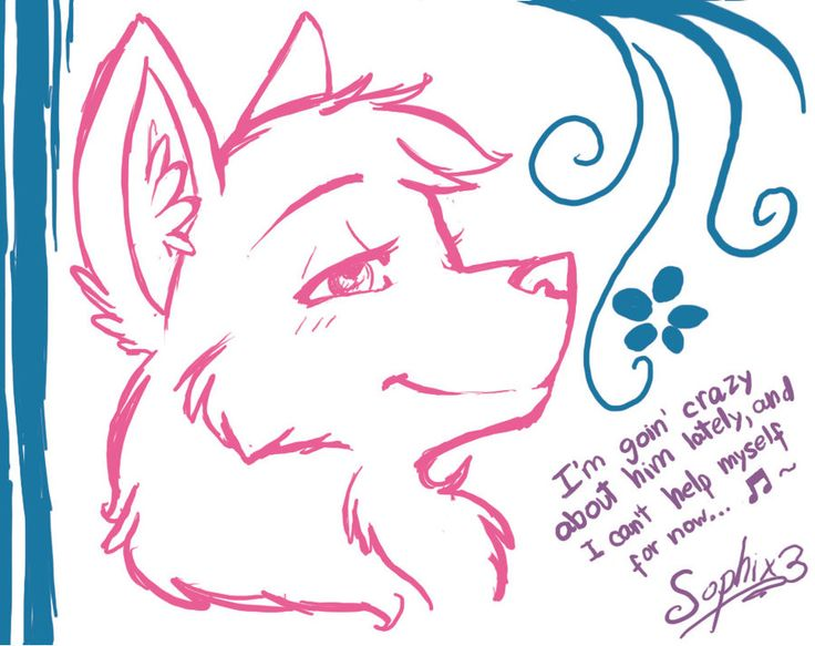 Cute Wolf Drawings | cute wolf practice C: by sophix3