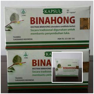 Toko Sahla Herbal ( sms or wa 08561848084 ): Kapsul Ekstrak Binahong Tazakka