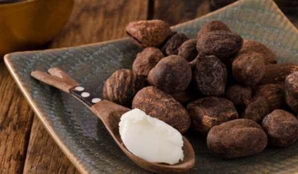 فوائد زبدة الشيا للحامل Food Almond