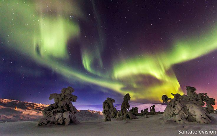 Aurora polar no céu de Levi na Lapônia na Finlândia
