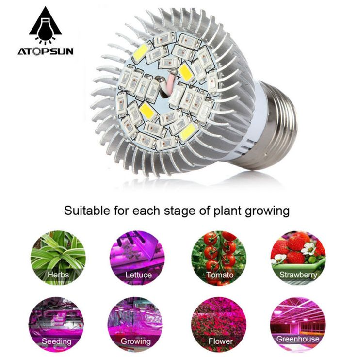 Best pcs Full Spectrum Led Grow Light E W Led Growing Lamp for plant Flower Plant Hydroponics
