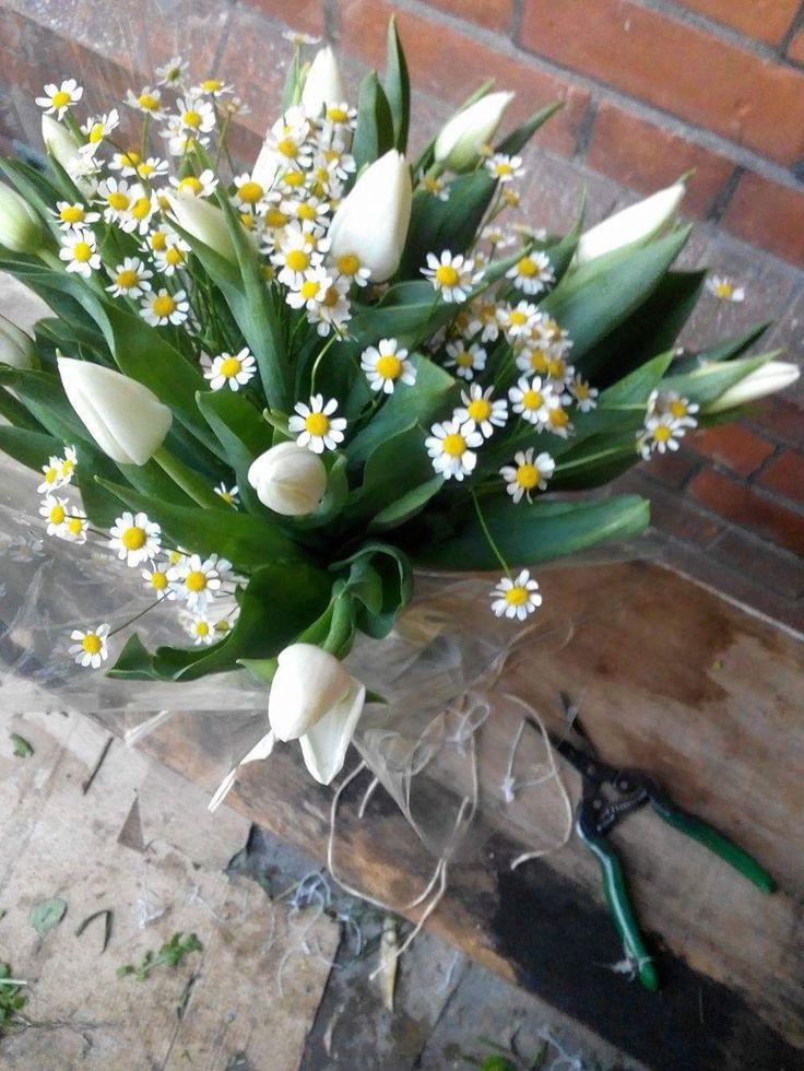 White tulip bouquet.