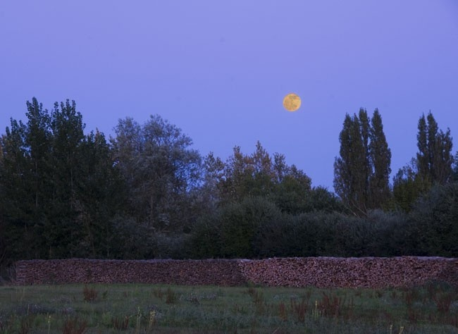 www.rustica.fr - Calendrier lunaire : avril 2013 - Attention à la lune rousse !