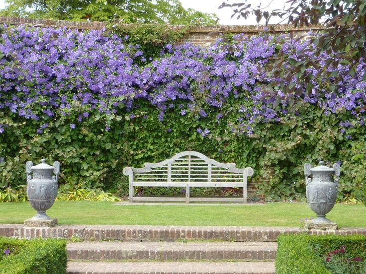 Lutyens Bench and Clematis 'Perle d'Azur' in the Rose Garden at Sissinghurst