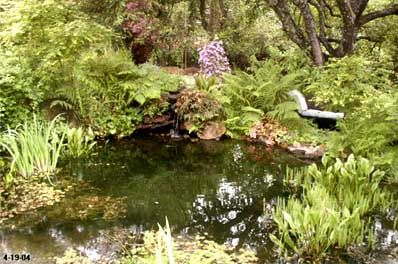 91 best insect hotel wildlife garden images on pinterest for Garden pond life