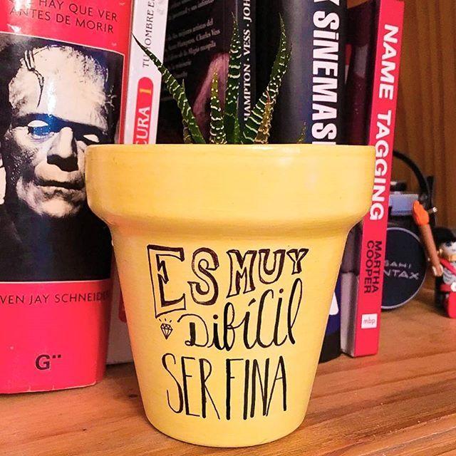 Y te juro que lo re intento 👸  #Succulove #succulent #succulentsofinstagram #succulentcity #CactusLove #cactus #CactusLover  #cactusofinstagram #cactusclub #cactusobsession #succulentobsession