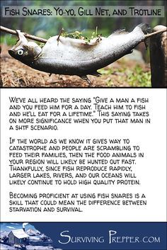 Knowing how to make and use fish snares could mean the difference between starvation and survival. Use auto-fishing to feed your family. via @https://www.pinterest.com/SurvivingPrep