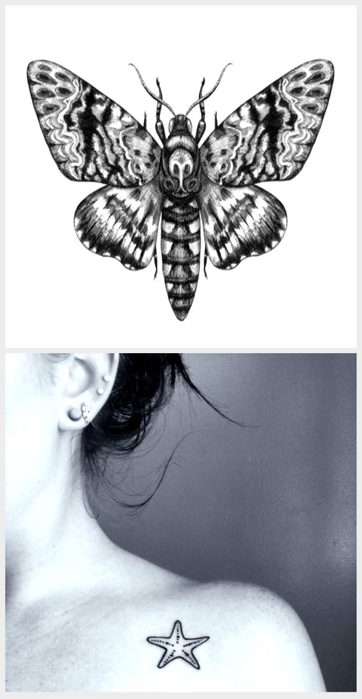15+ Acherontia styx ideas