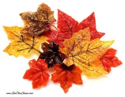 Soap Leaves! These cool soap leaves come scented with the fragrances of Fall: apple, cranberry, spice, cinnamon, anise and pumpkin.