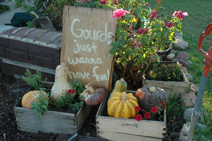 Fall is so fun!  Bee box planters.: Bee Business, Pumpkin, Box Planters, Bee Boxes