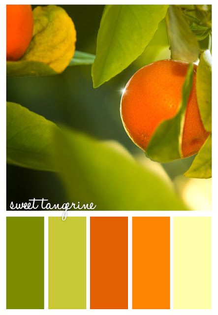 Gorgeous greens and tangerines via Colorways ~ Colour Palettes.