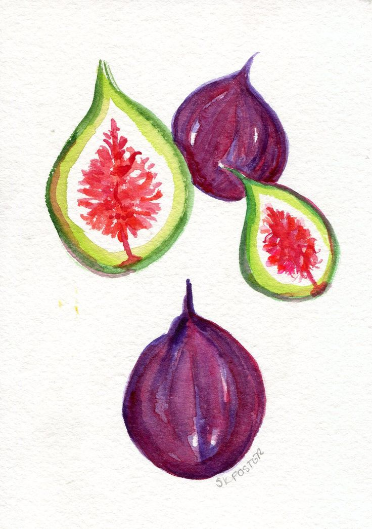 Figs Original Watercolor Painting, Small Fruit Artwork. Kitchen Wall Art 5 x 7 by SharonFosterArt on Etsy