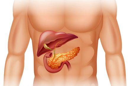 Per pancreatite acuta si intende una forma infiammatoria acuta del pancreas e dei tessuti circostanti, che può presentarsi sotto una forma lieve (detta edematosa) o grave (detta necro-emorragica). Il principale sintomo è un violento dolore che si...