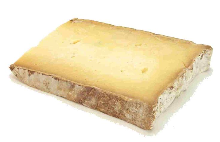 Cook's Thesaurus:  Semi-Firm Cheeses