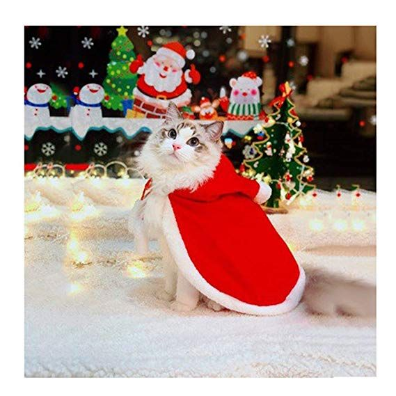 Amazon Com Best Seller Cat Costume Pet Christmas Costume Santa Cloak Cat Cape For Small Cats Dogs Christmas Pet Clothes Christmas Animals Christmas Cats