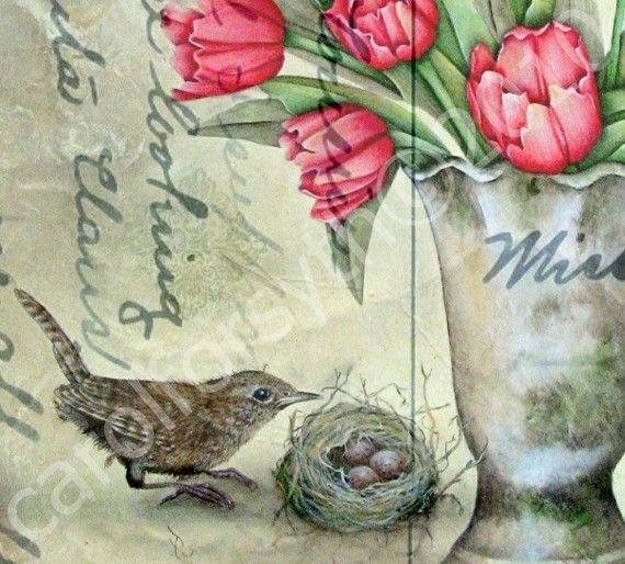RED tulips nest bird WREN antique post card by carolforsythca, $8.00