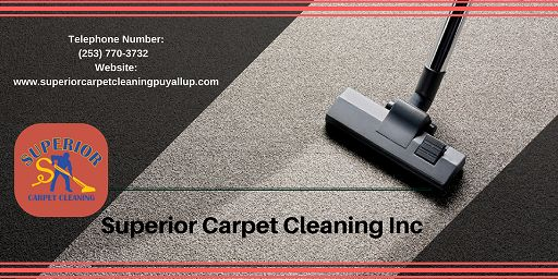 Carpet Steam Cleaning Upholstery Cleaning Air Duct Cleaning Tile and Grout Cleaning Pet Stain and Odor Removal Carpet Stretching and Repair House Cleaning Move in/out Roof and Gutter Cleaning Pressure Washing Free Estimate Cleaning Emergency Service 24/7 Water Extraction Organic Carpet Cleaning Apartment Cleaning Carpet and Fabric Protection Commercial Carpet Cleaning Affordable Carpet Cleaning Professional Carpet Cleaning Superior Carpet Cleaning Carpet Cleaning Services