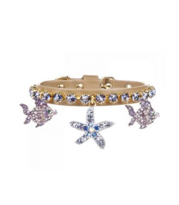 Collar perro Sea Star